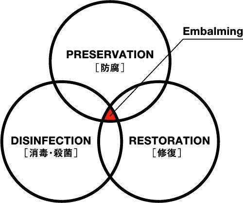 消毒・殺菌/防腐処置/修復処置
